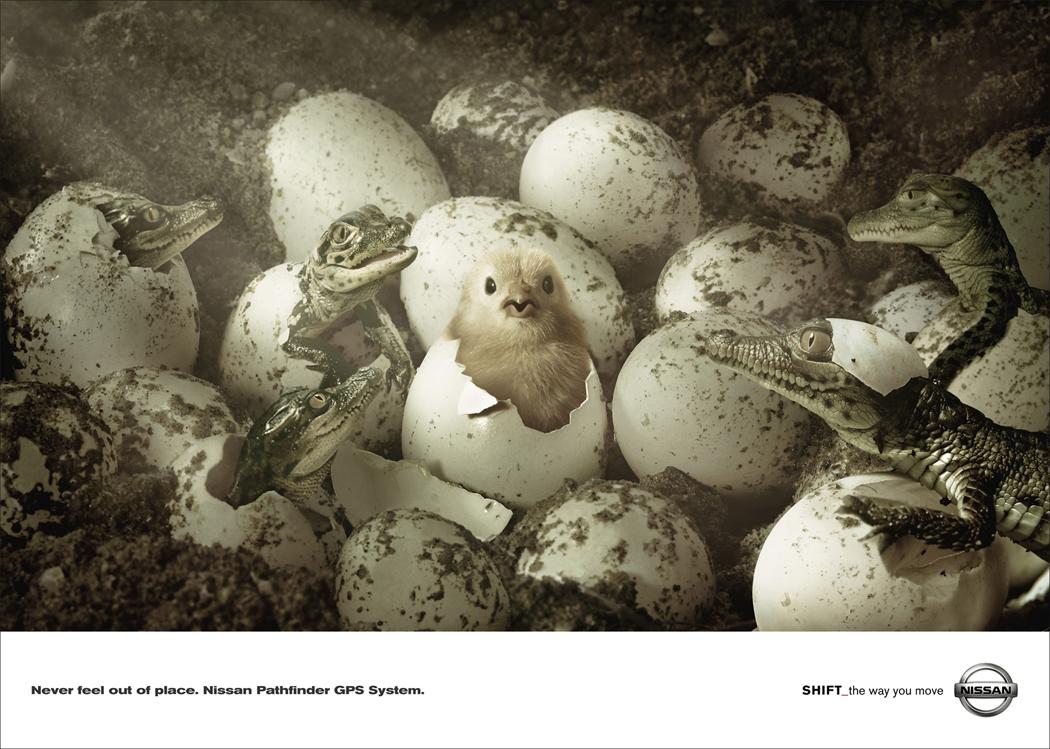 Pathfinder-Chick.jpg