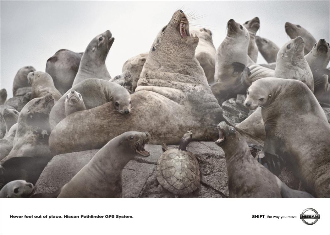 Pathfinder-Seals.jpg