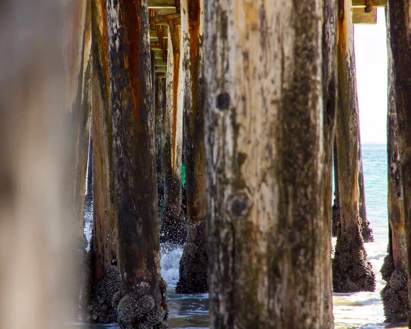Pier Review