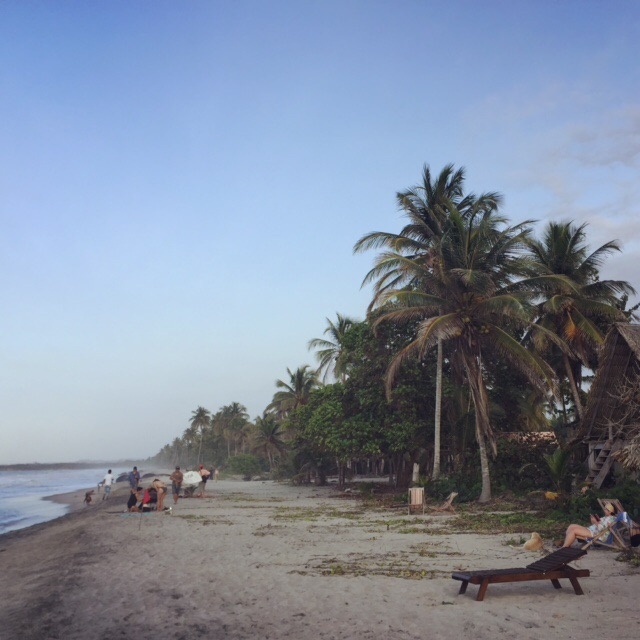 Playa Palomino's chilled out strip of beachy heaven