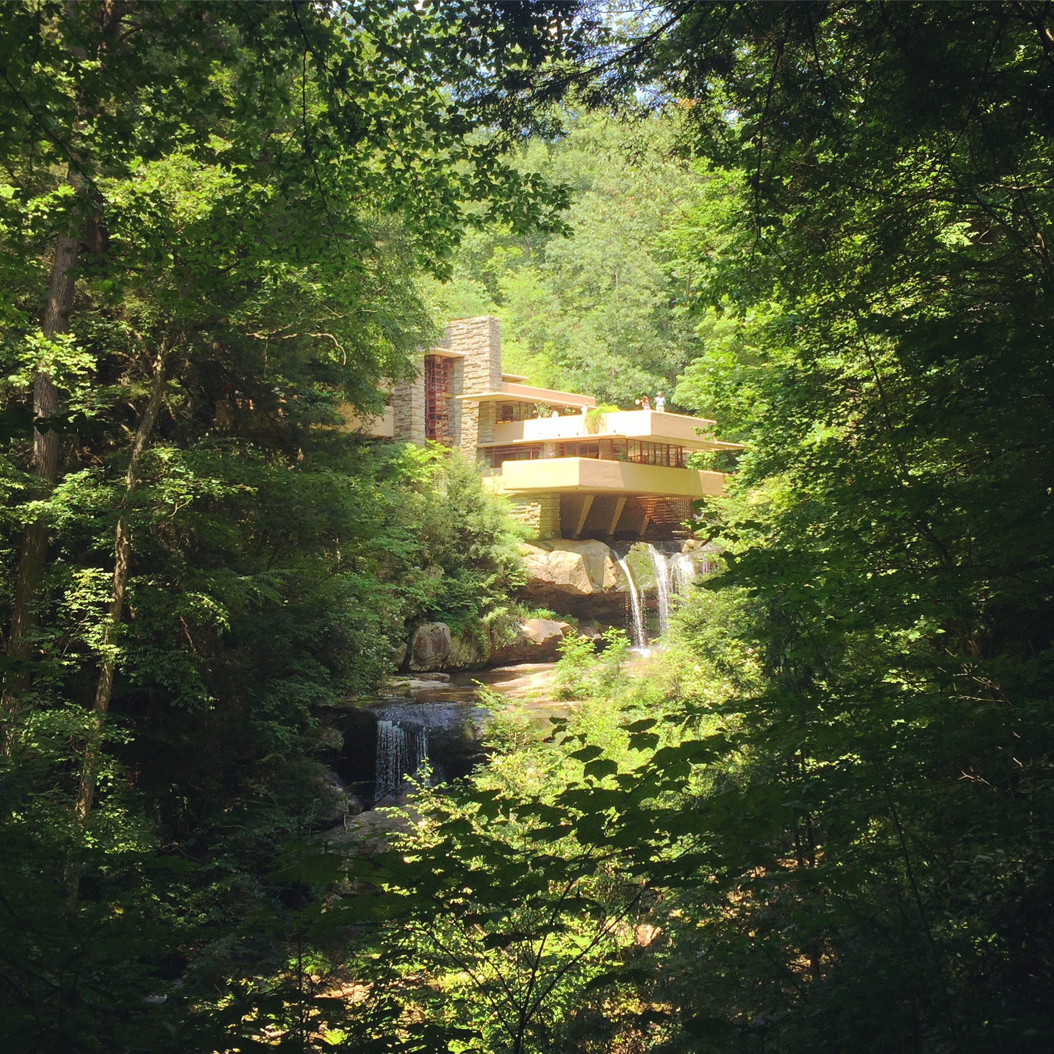 The aptly named Falling Water