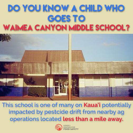 KAUAI_Waimea Canyon Sharable Image_3.png