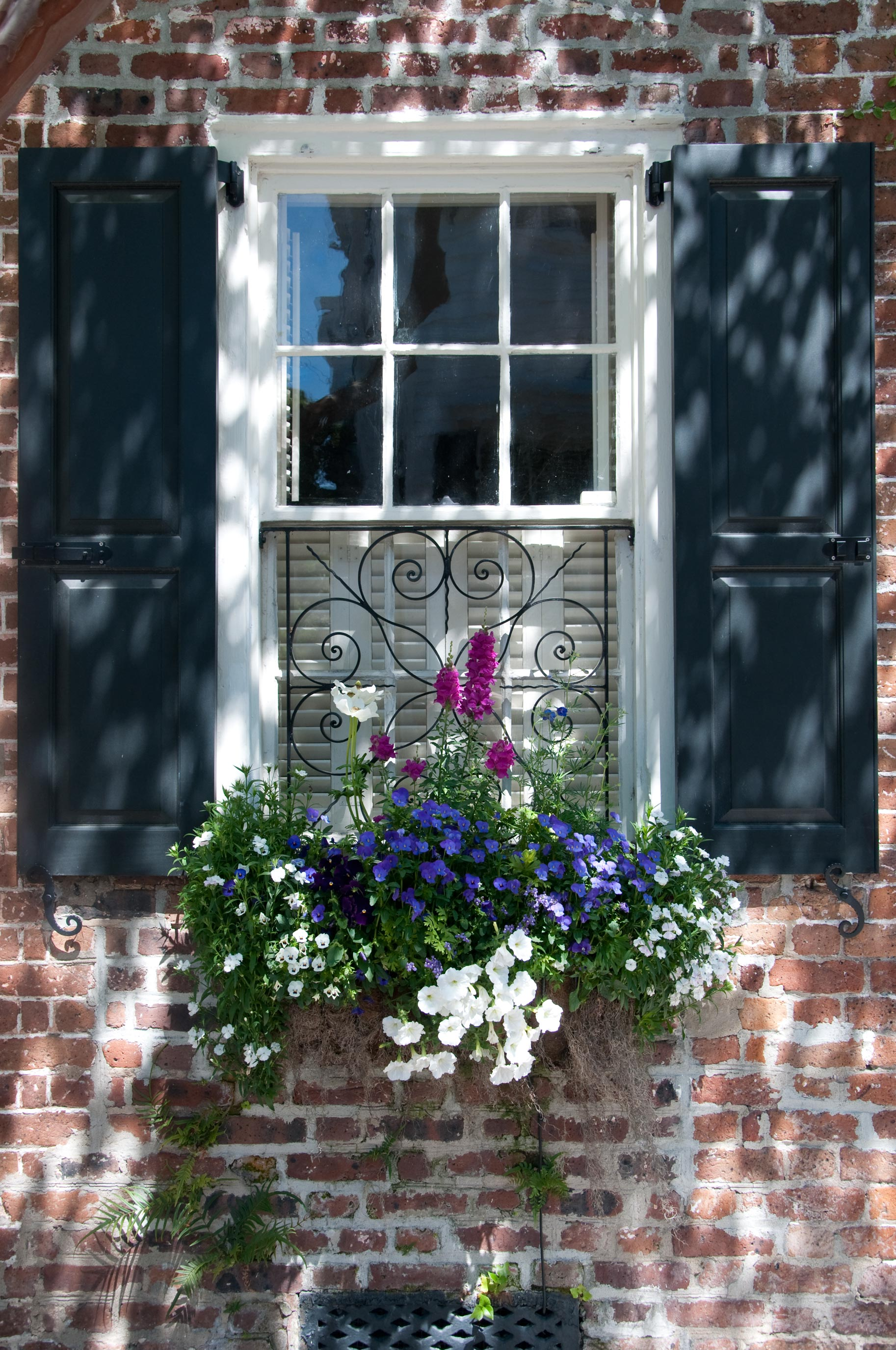 grey wooden shutters Winchester Hampshire