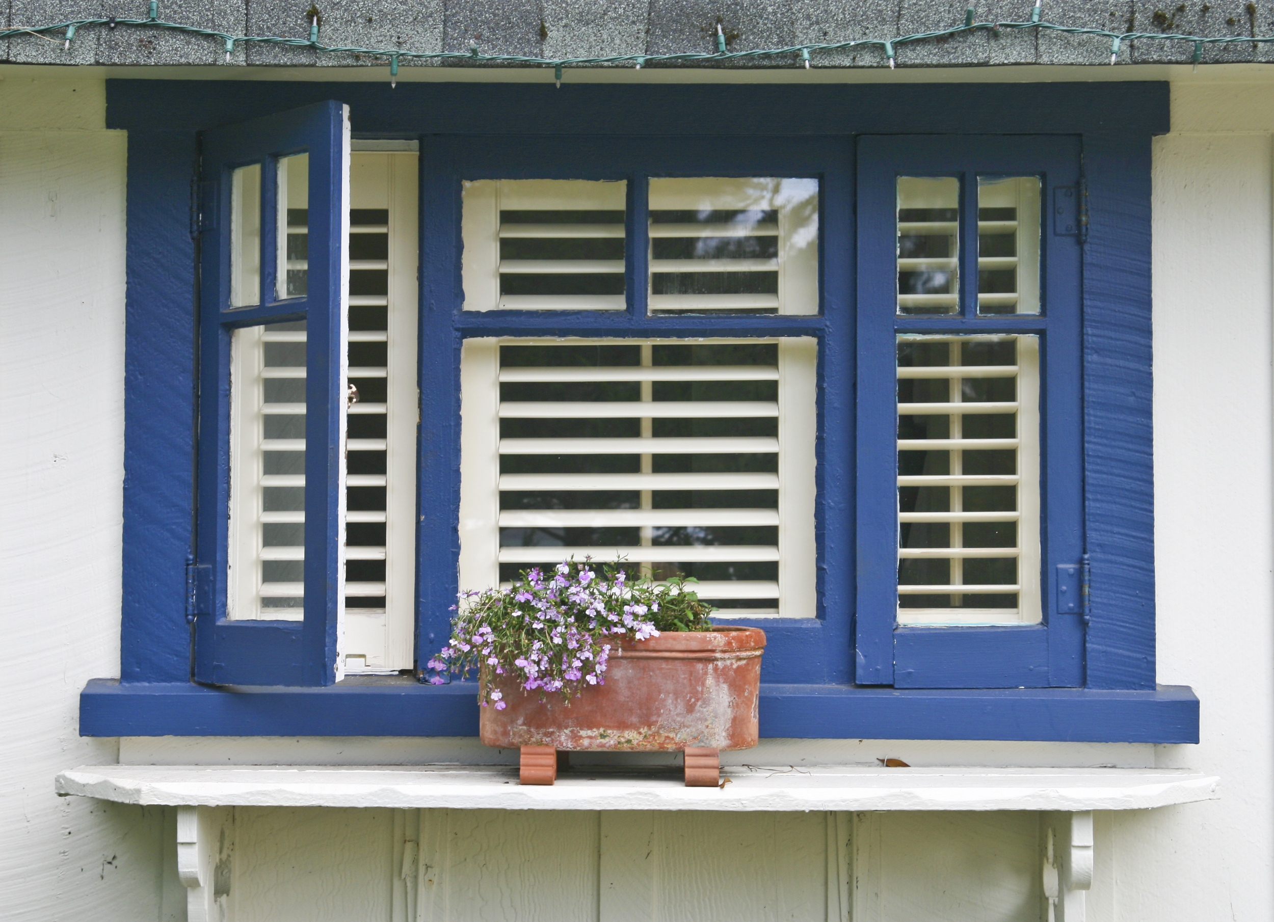 shutters-in-window-with-blue-frame.jpg