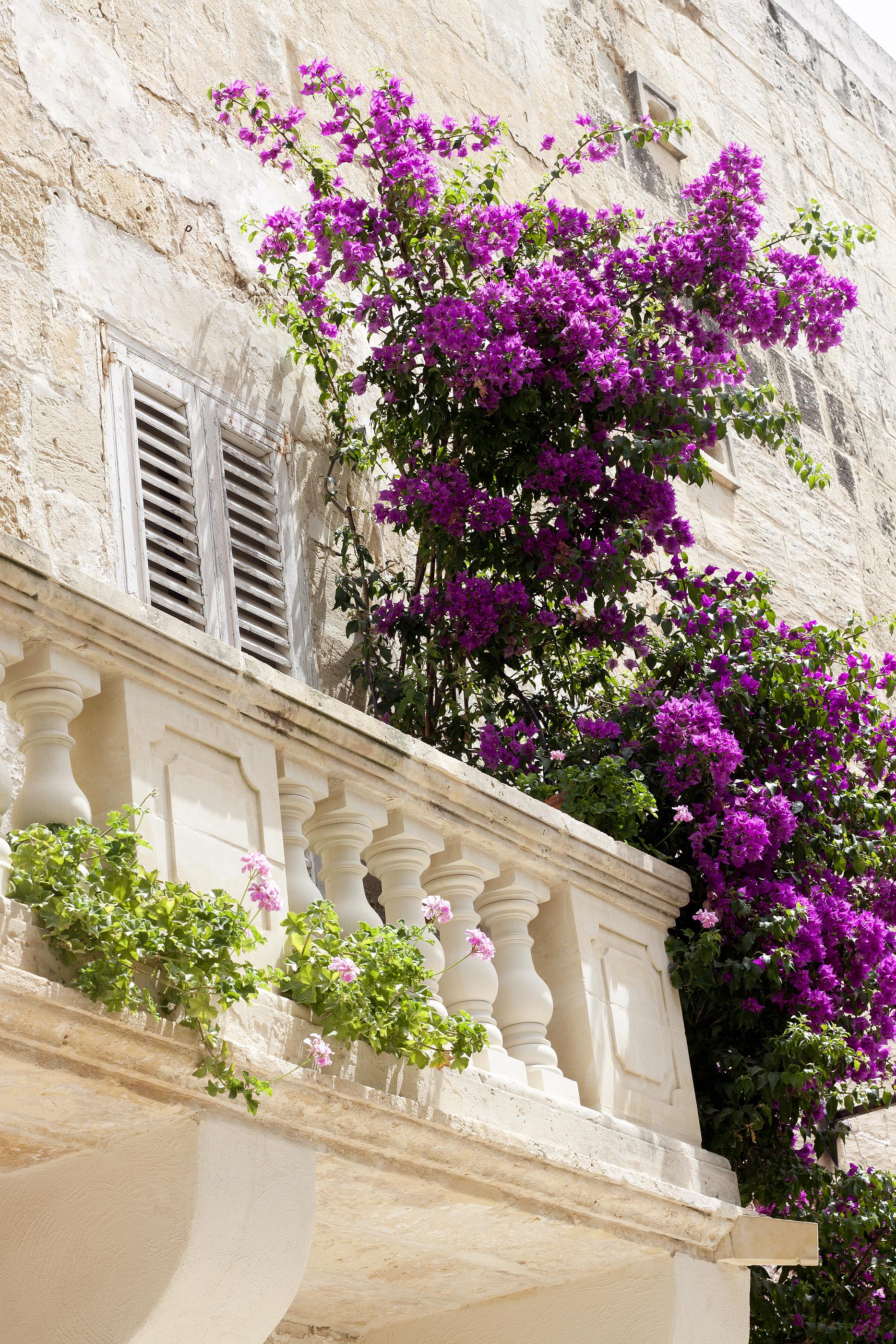 shutters-old-balcony.jpg