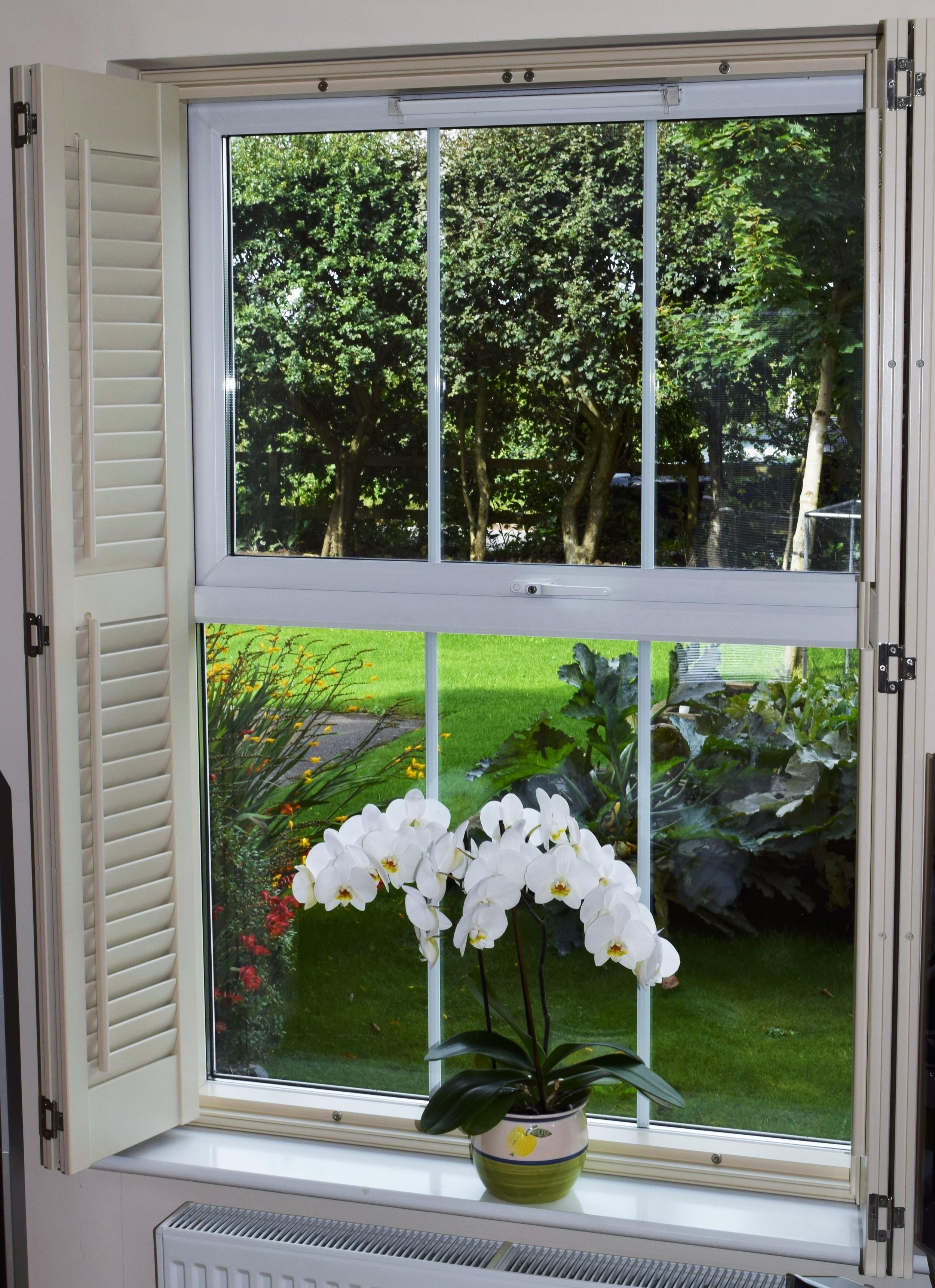 Interior plantation shutters Dorset Hampshire