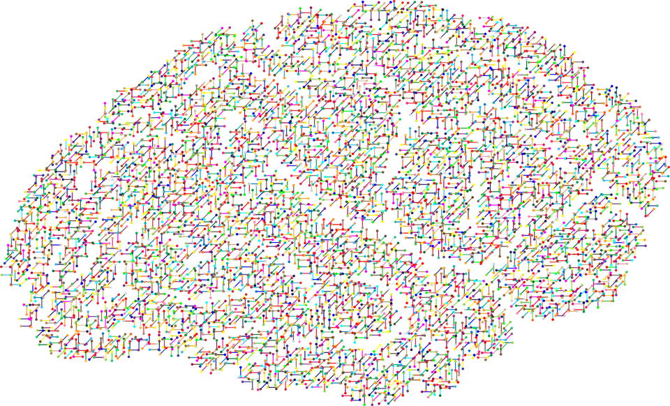 dna_brain.png