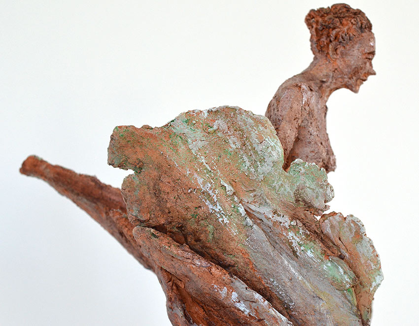 Ancolie (détail), 42cm, 2012