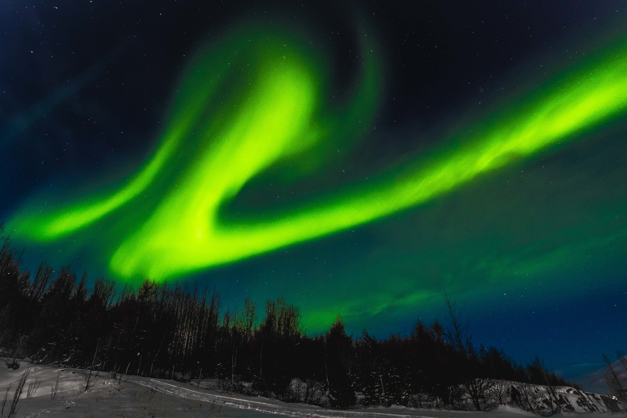 icelandsocials-54.jpg
