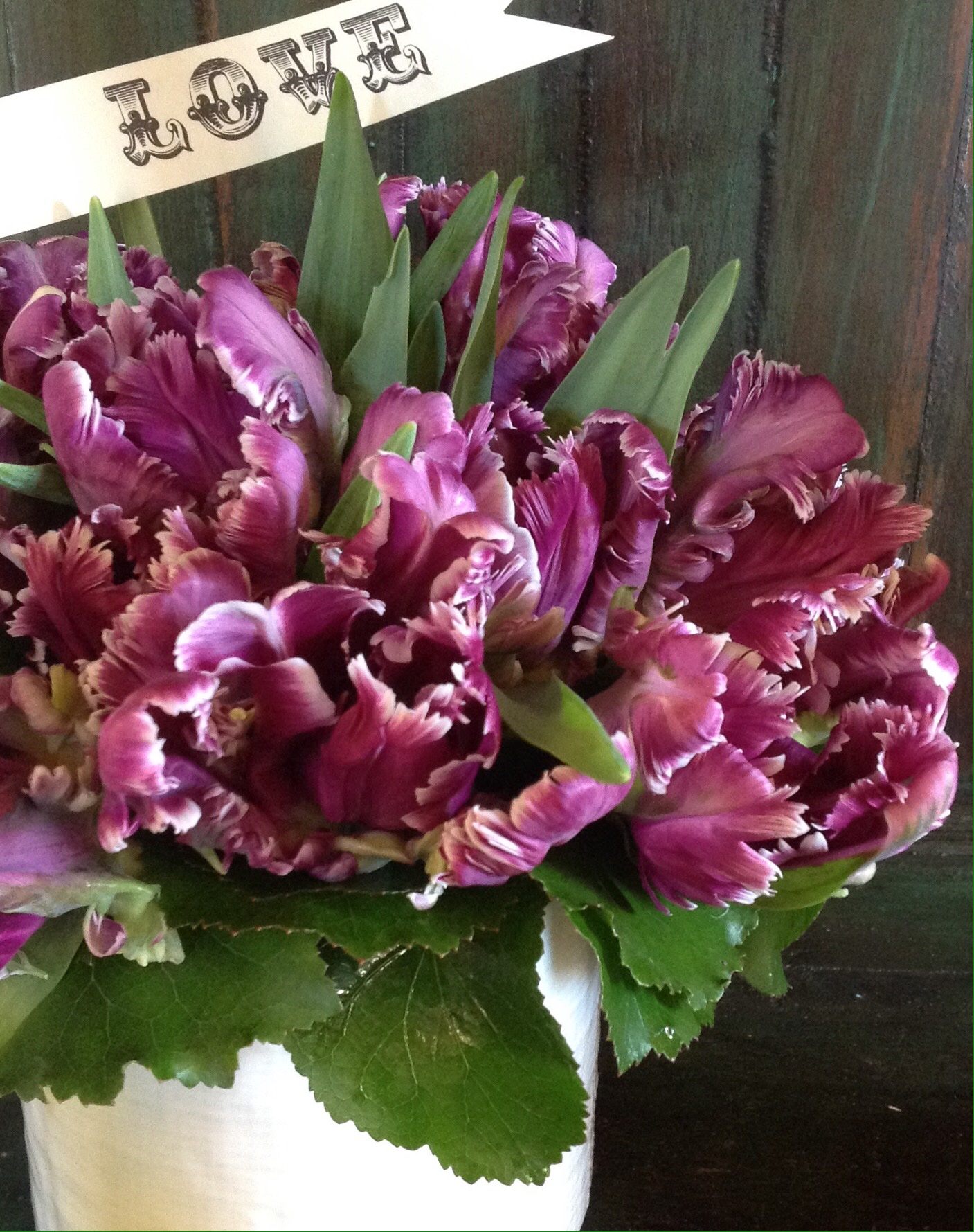 Mysterious Parrot Tulip bouquets starting at $100