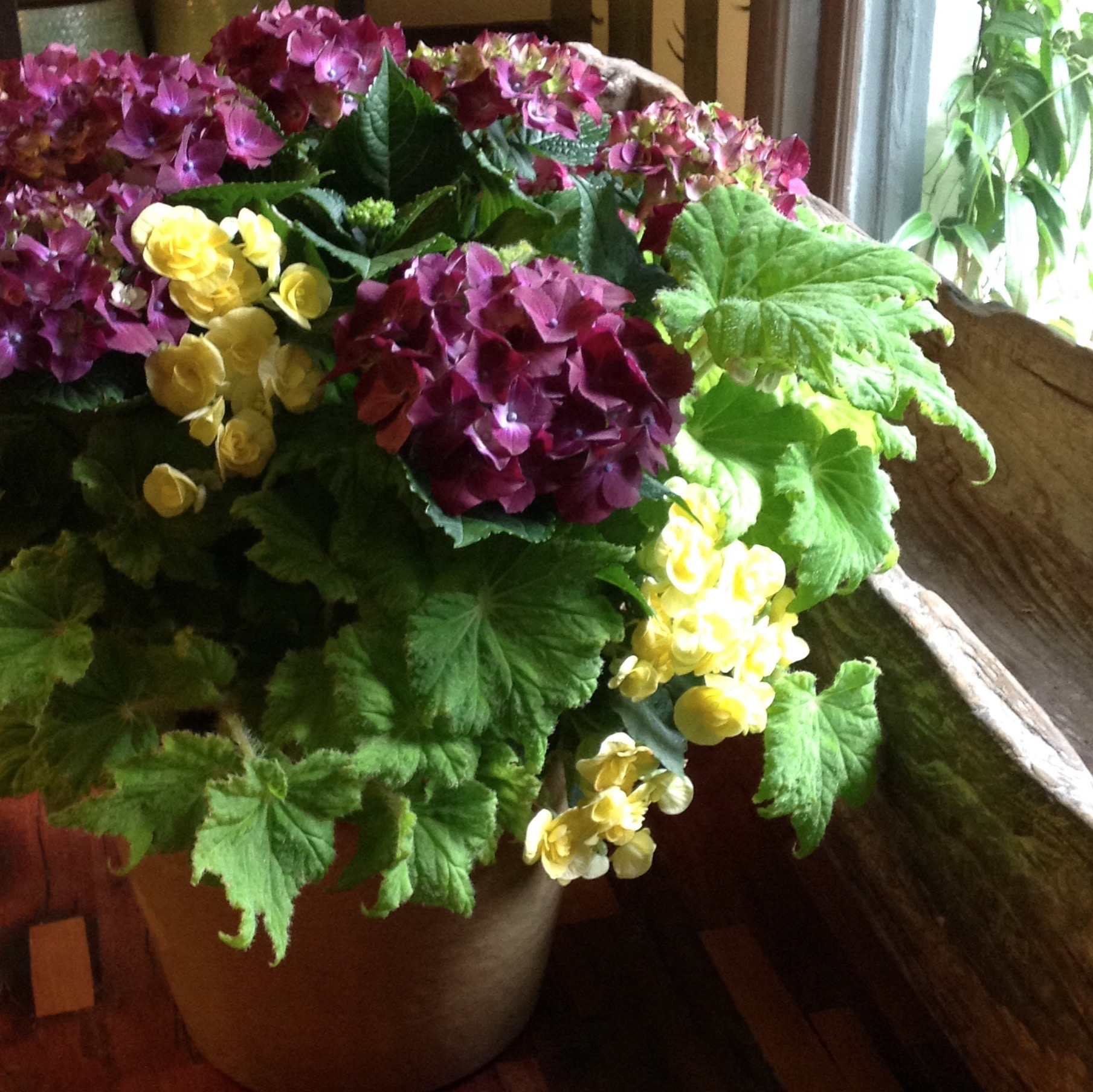 Colorful garden plantings starting at $165 (as shown $165)