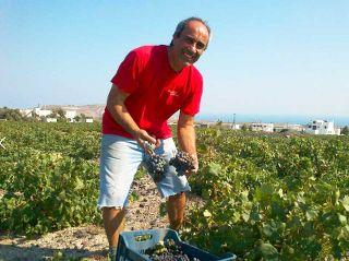 Mr. Gavalas : a dedicated and passionate Santorini Wine Maker