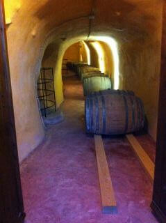 This is the tunnel with the fermentation vats at the lower level of the winery.