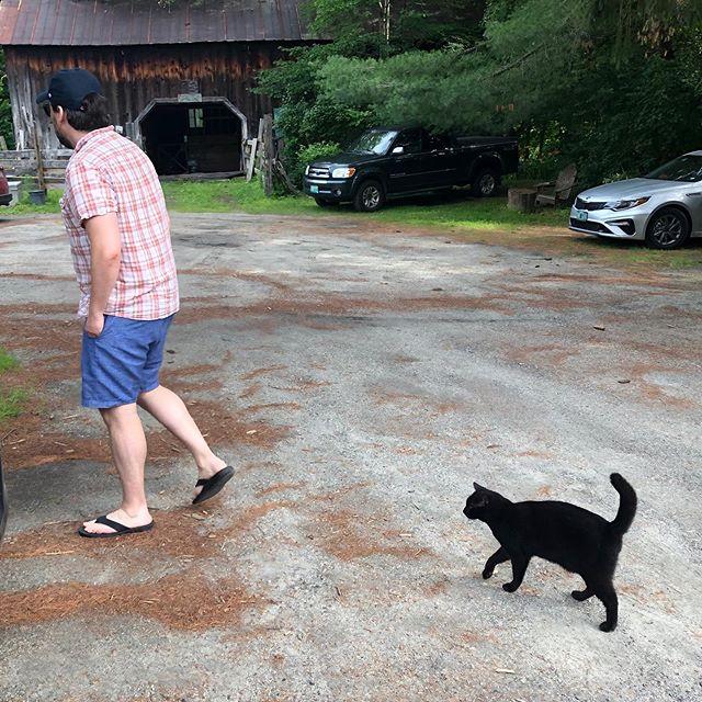 VT Cats & Dogs 😻😻😻😻 @annabellakuehn @tylercomings @belanger_chris  #catsofvermont #dogsofvermont #ilovevermont
