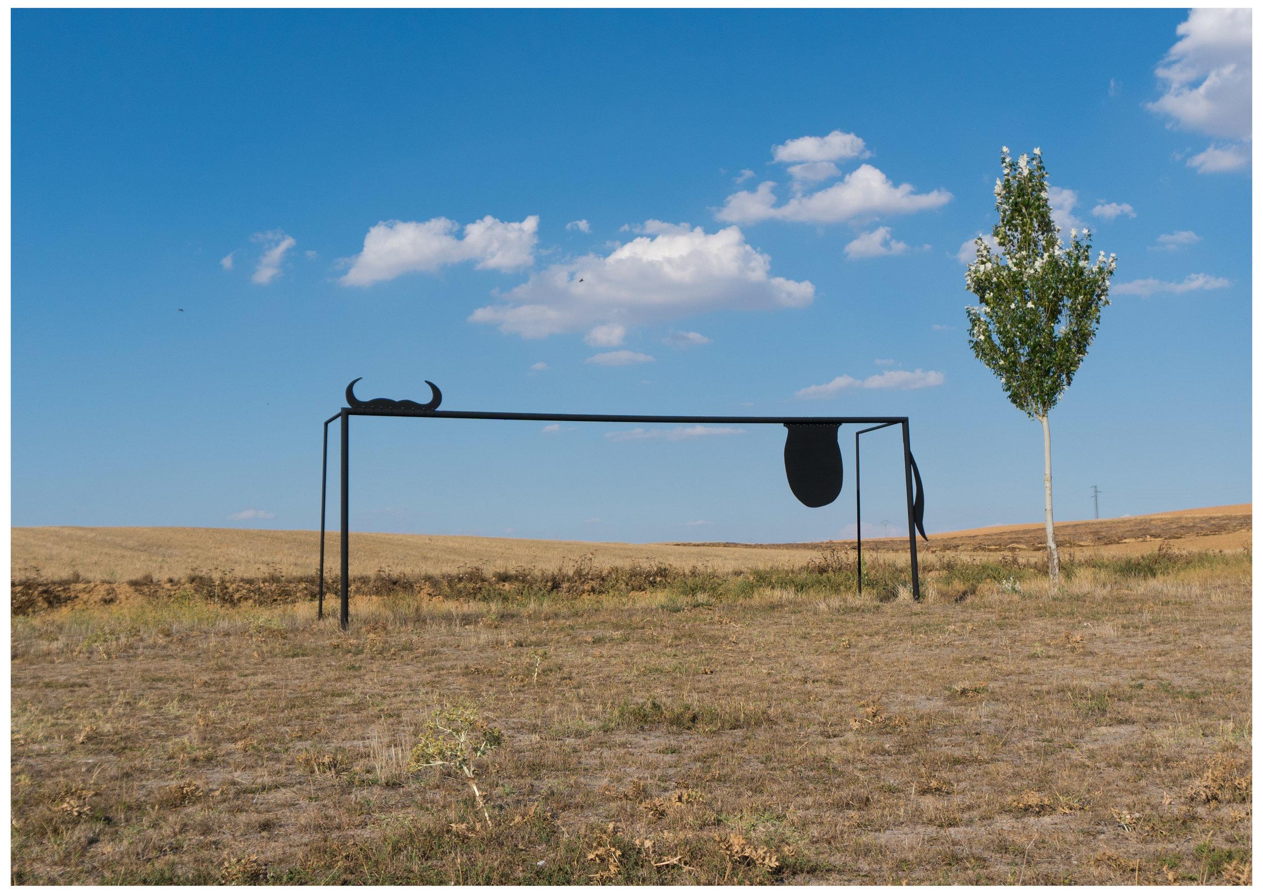 About football, goals, bulls and balls I
