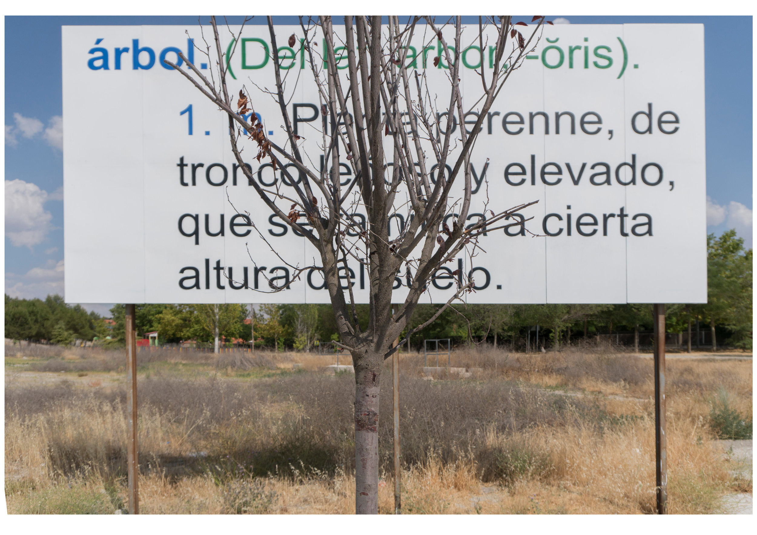 About a tree annoying the reading of the definition of a tree I