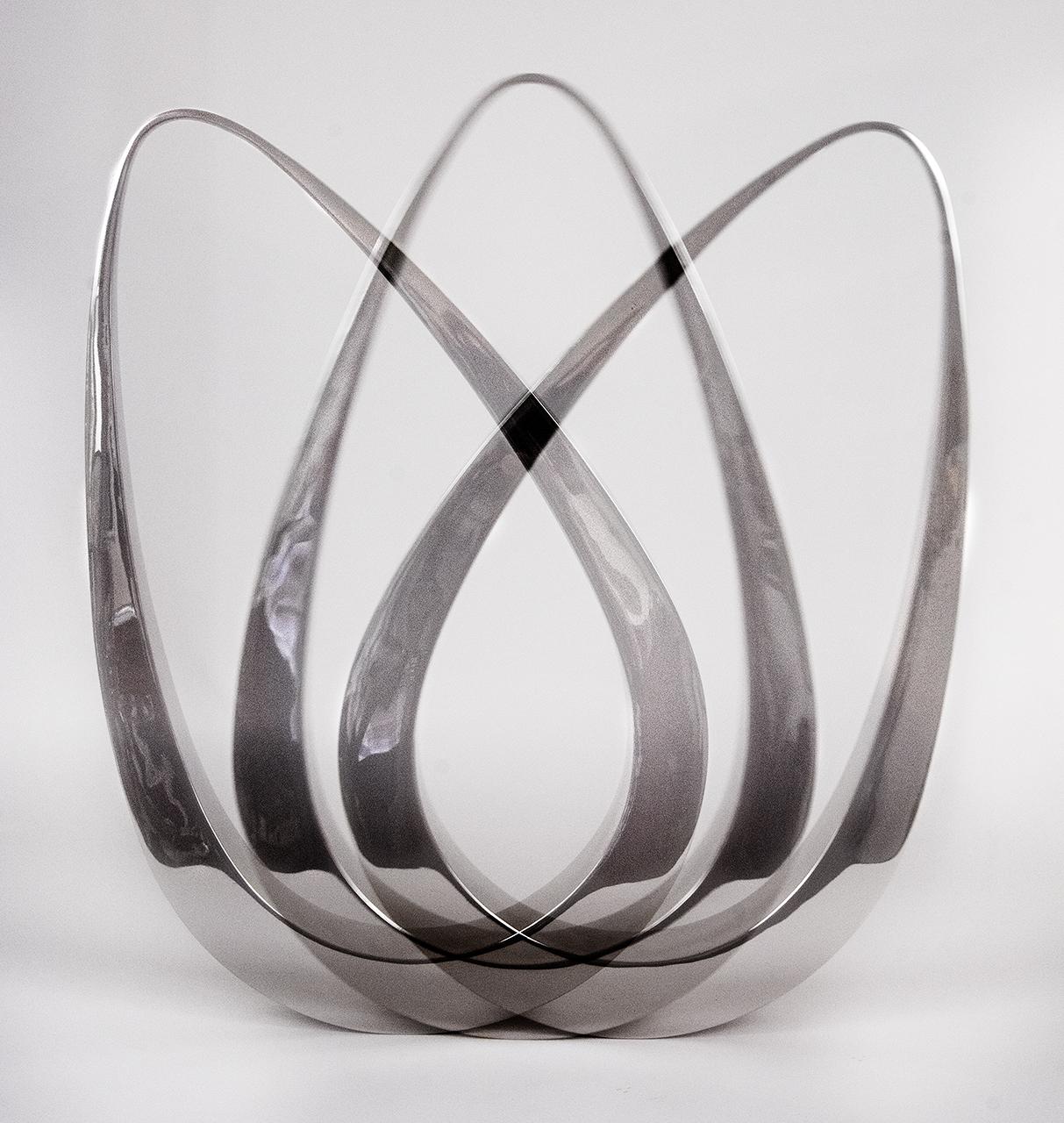 Kinetic photo of Stainless steel pendulum Tarik Currimbhoy
