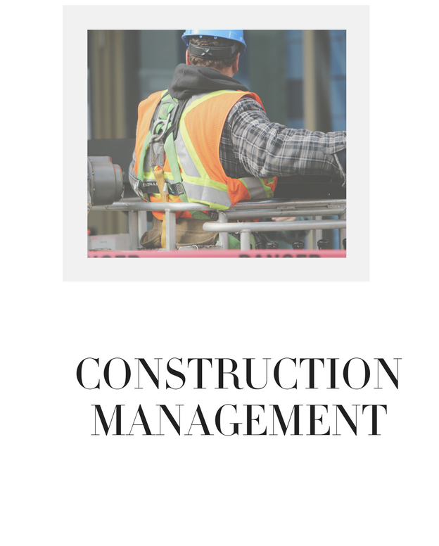 Construction Management Real Estate chicago Realtors