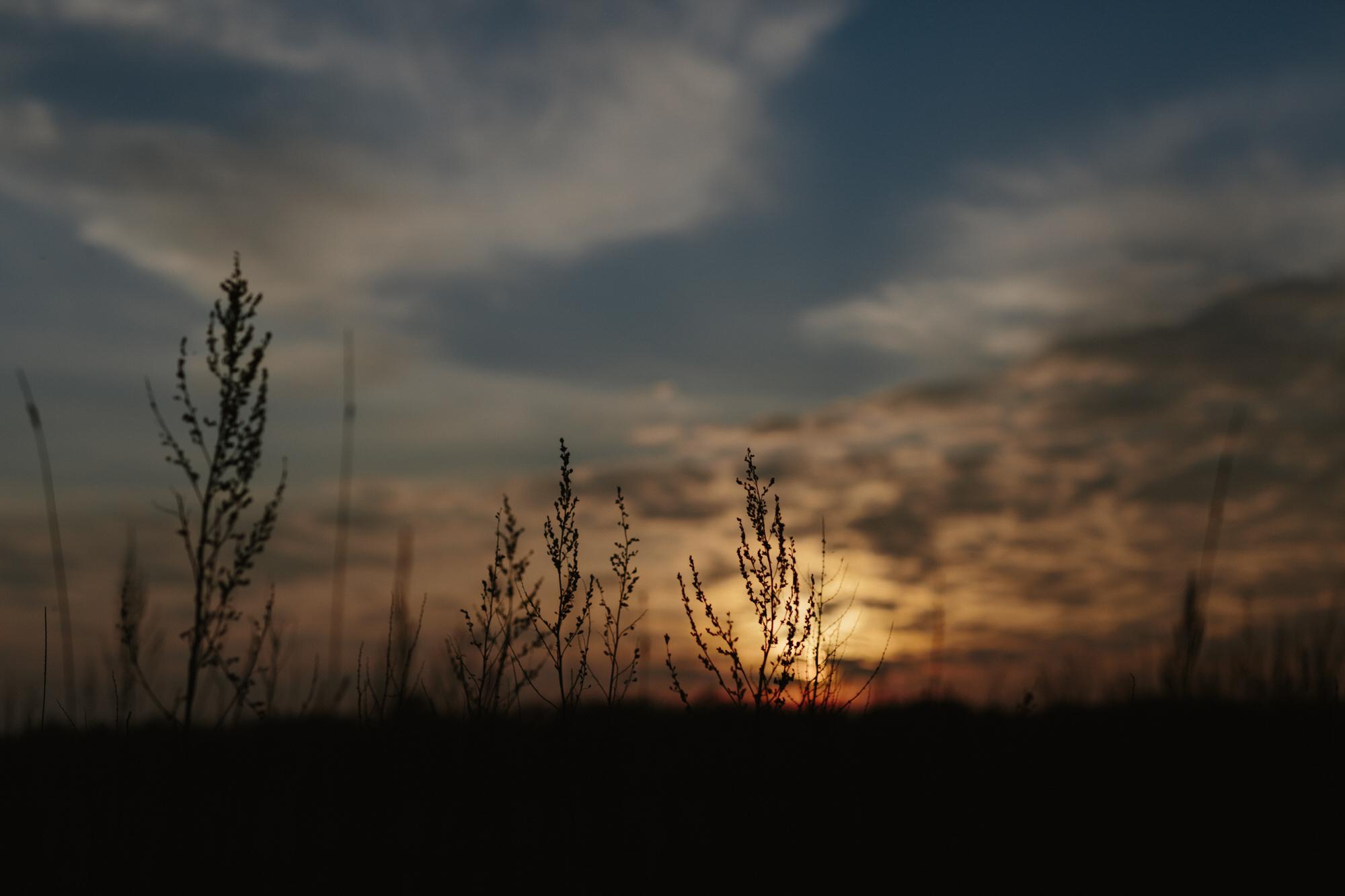 sunset-denmark-jim-lingvild-castle-grounds.jpg