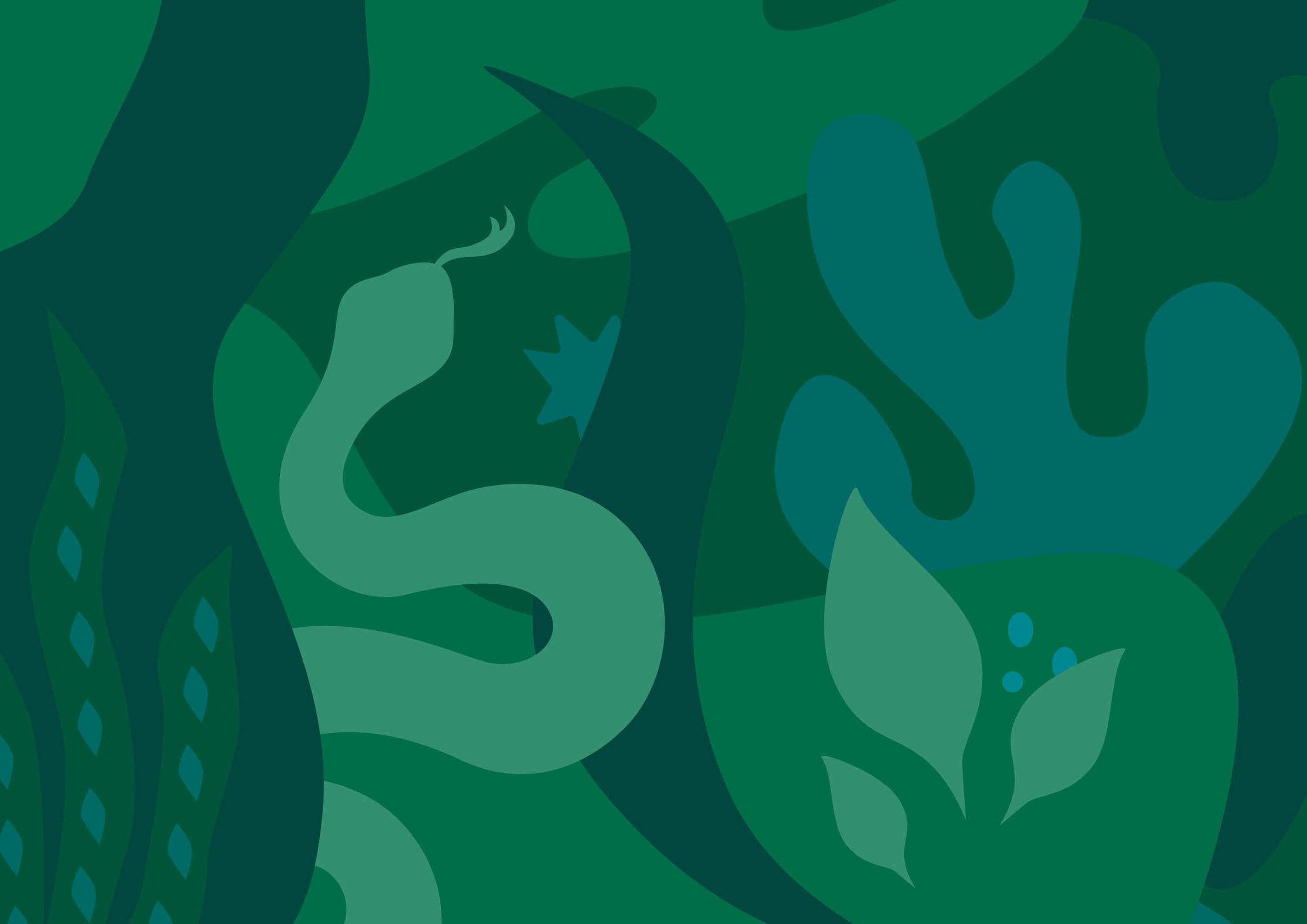 JungleBook Portfolio2.jpg