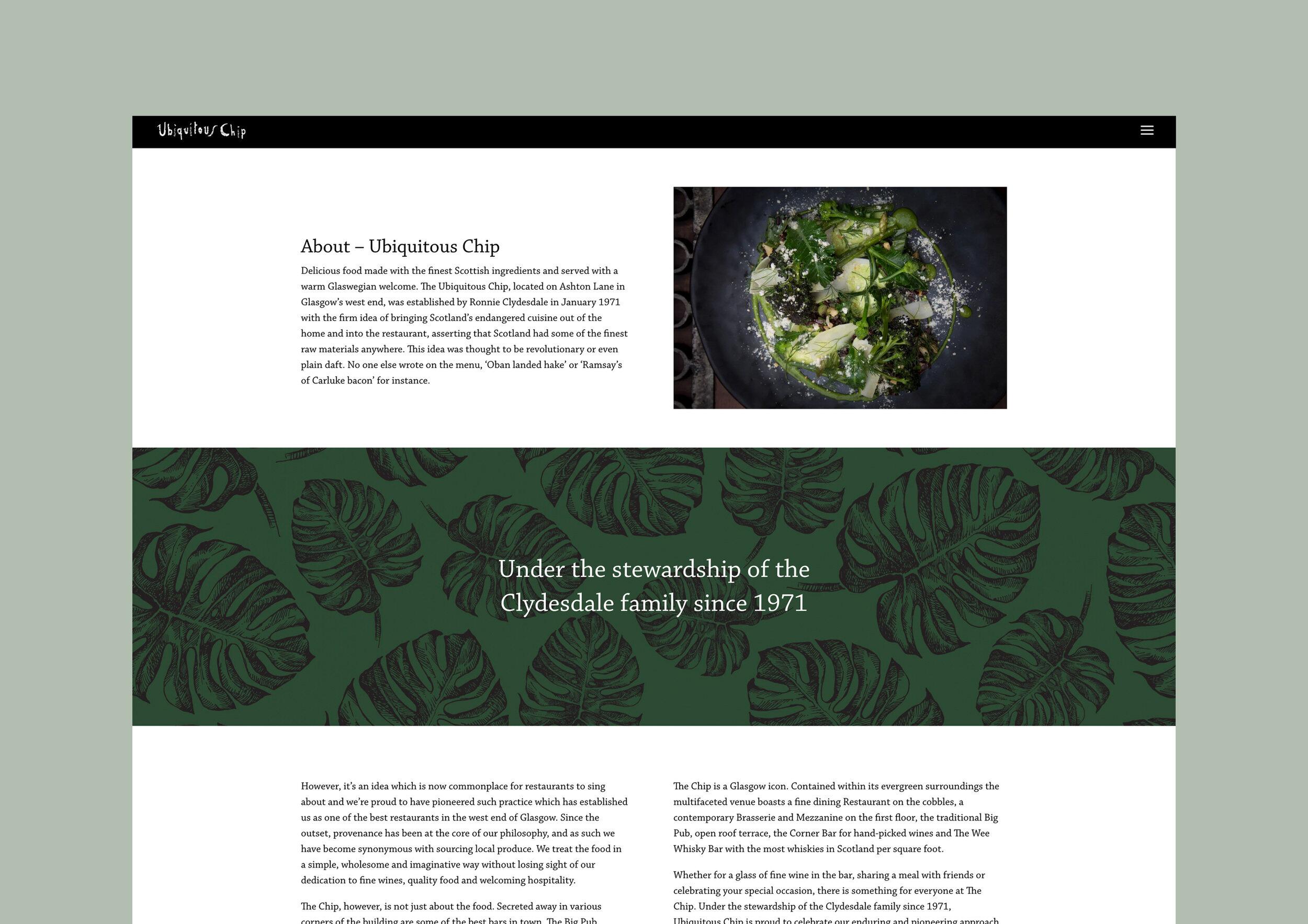 Chip Website 01.jpg