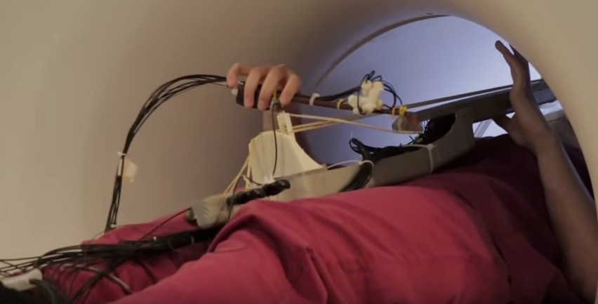 Click here to see how this unique instrument helps us understand the musician's brain.