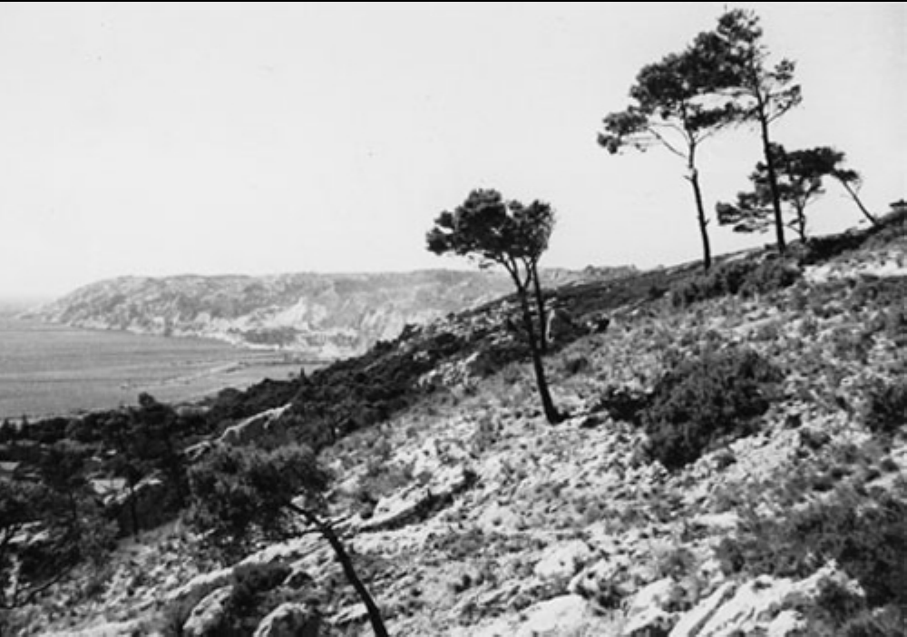 View to the west above L'Estaque