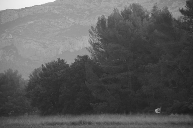 Landscape 6.jpg