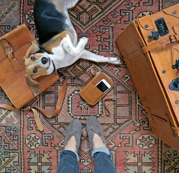 suitcases1.jpg