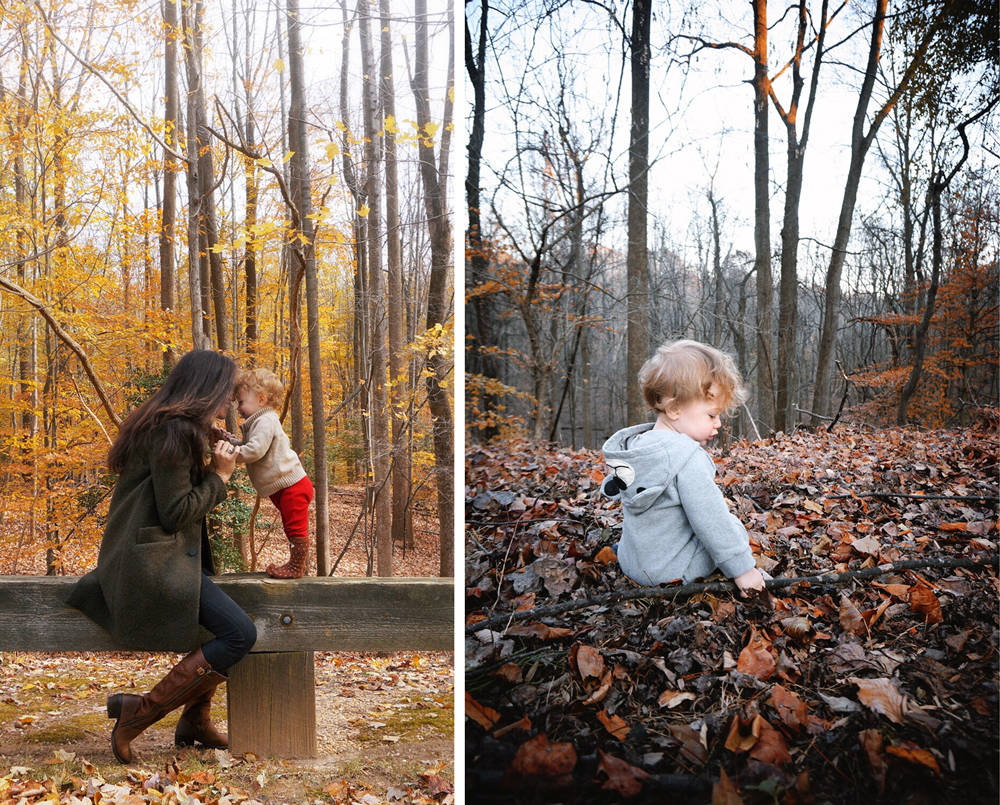 blog_westwhitwoods.jpg