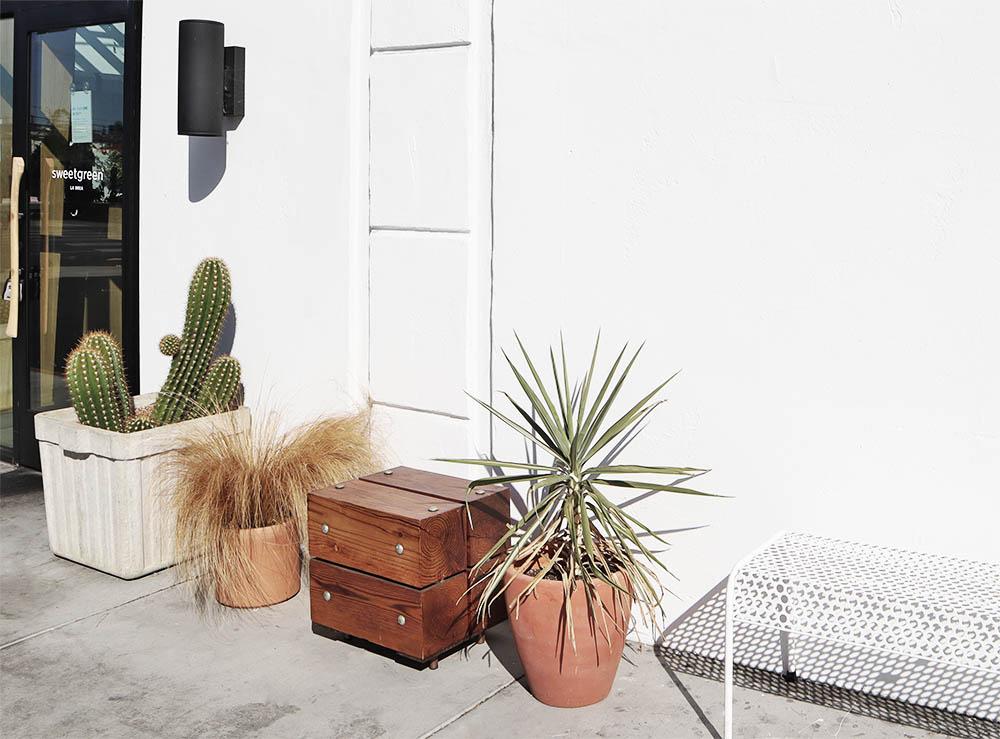 exteriorplants.jpg