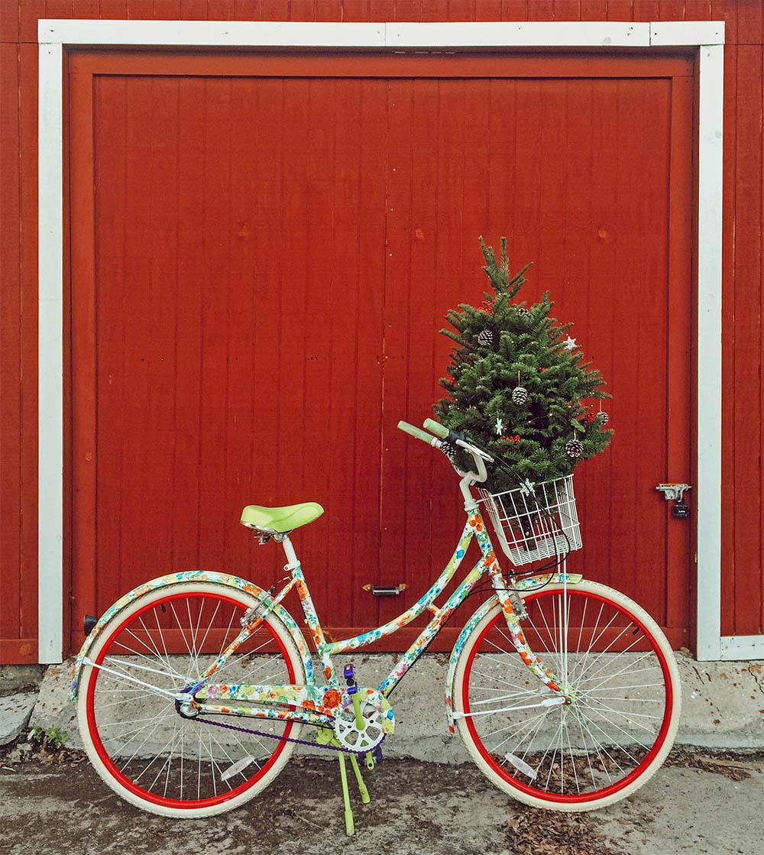 blog_tinyhousechristmastree_bike.jpg