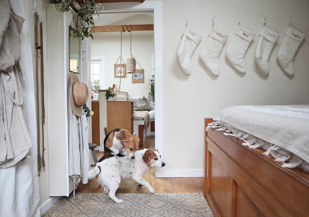 pups stockings.jpg