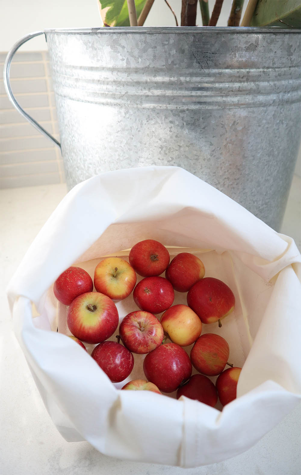 tinyhouse_apples_paperbag.jpg