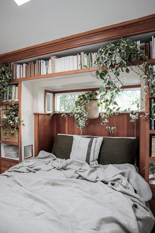 tiny_house_plants.jpg
