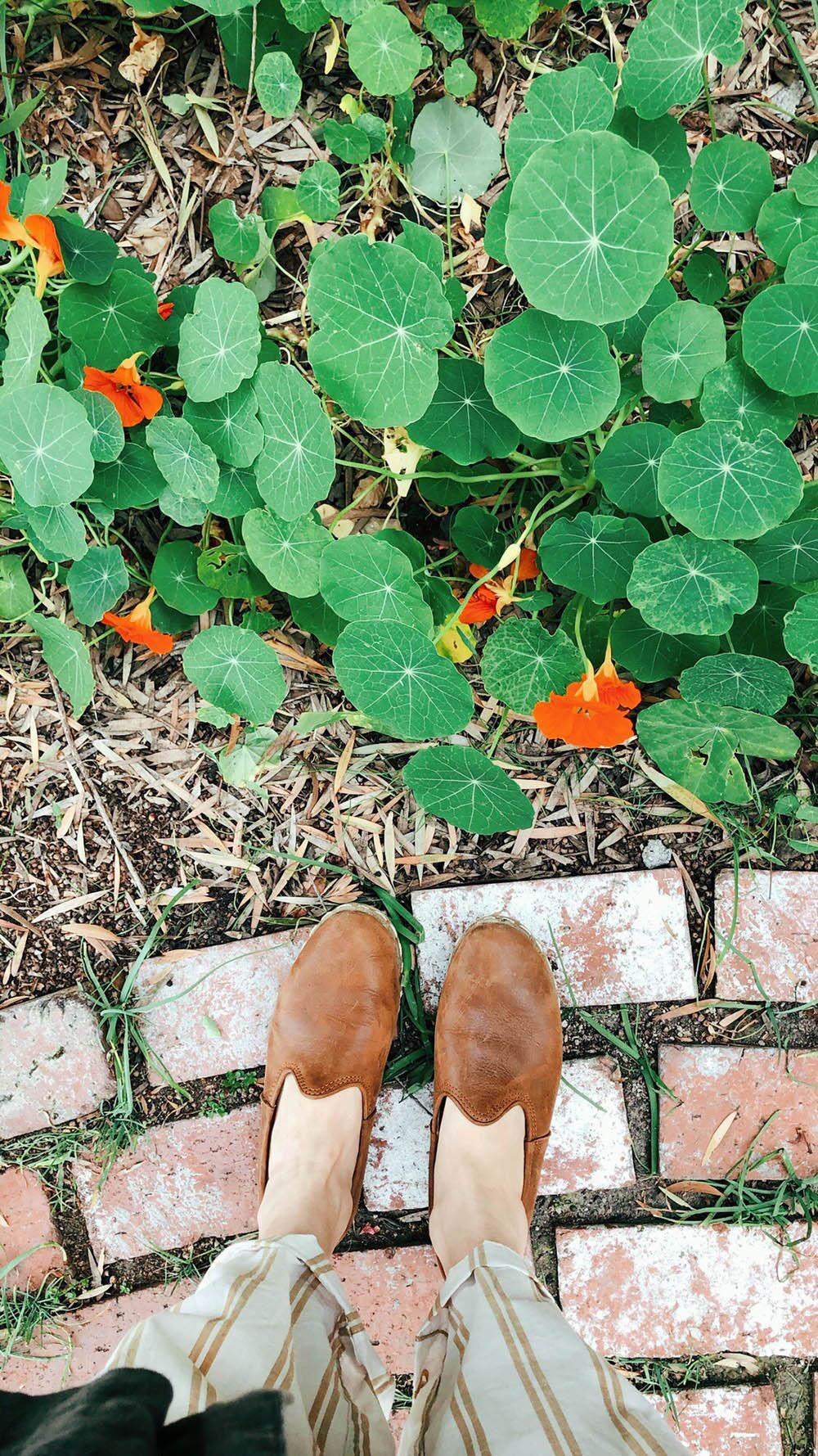 garden_goals.jpg