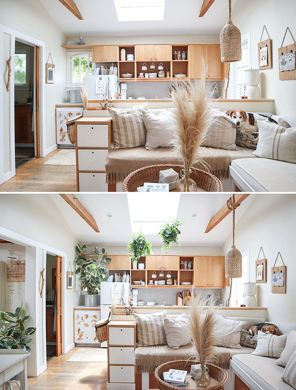 small_space_plants_tiny_house_7.jpg