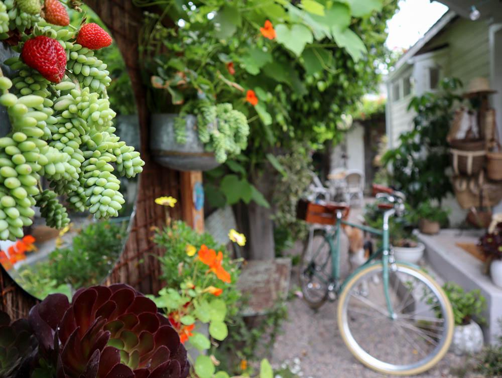 small_space_living_garden_bike.jpg