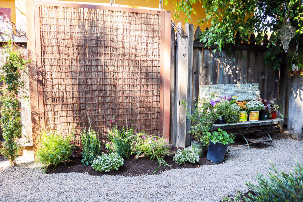 tiny canal cottage garden wall makeover 1.jpg