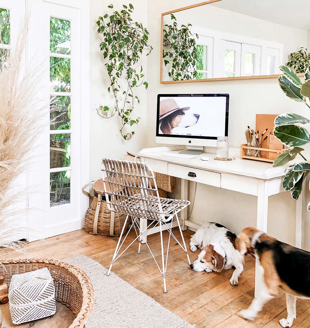 baskets_office.jpg