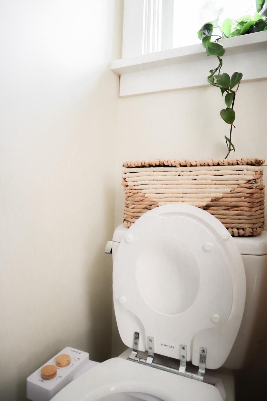 potty_training_seat_small_space.jpg