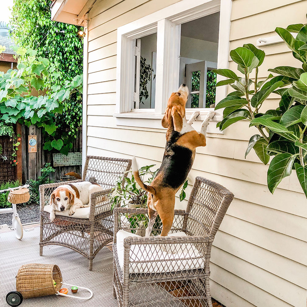 tiny_porch.JPG