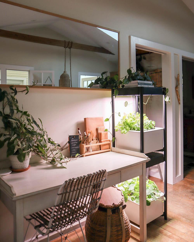 indoor_small_space_gardening_2.jpg