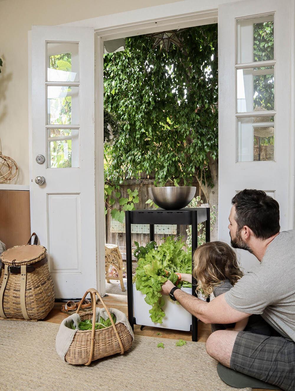 indoor_small_space_gardening_19.jpg