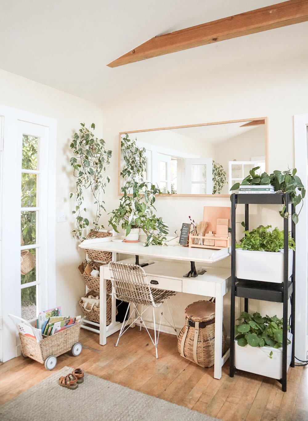 indoor_small_space_gardening_15.jpg