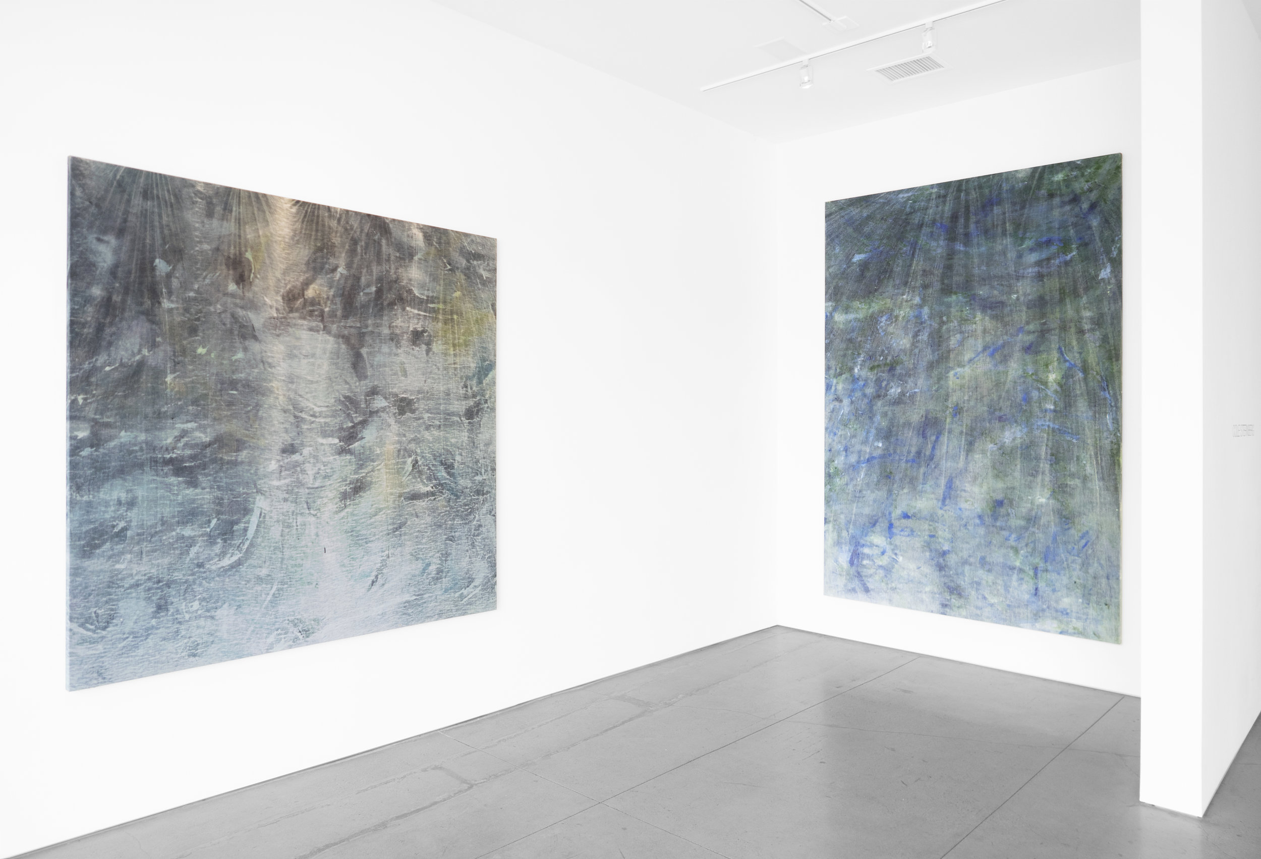 Cole Sternberg Solo Exhibition 2019_Peter Blake Gallery_Installation View_1.jpg