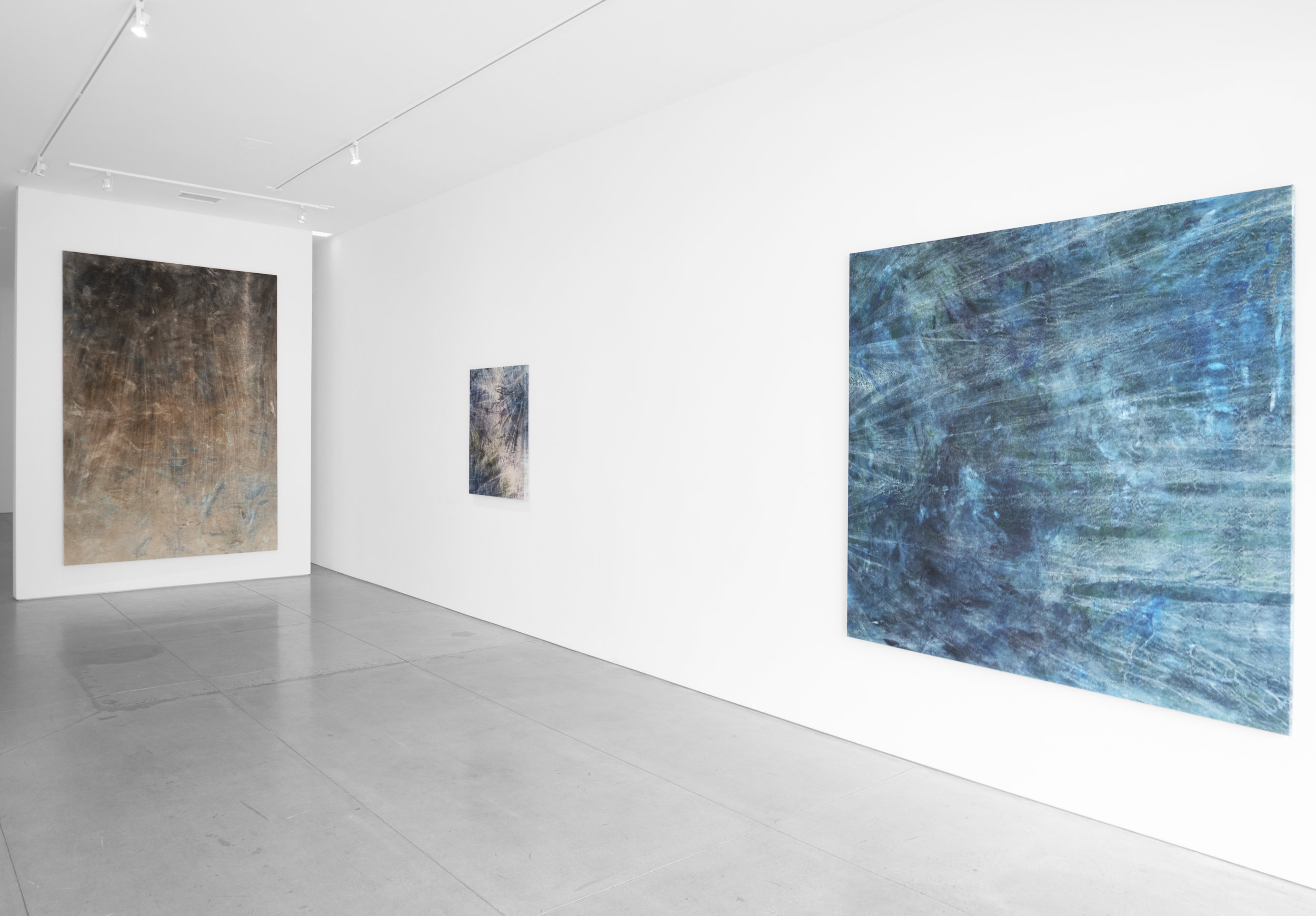 Cole Sternberg Solo Exhibition 2019_Peter Blake Gallery_Installation View_2.jpg