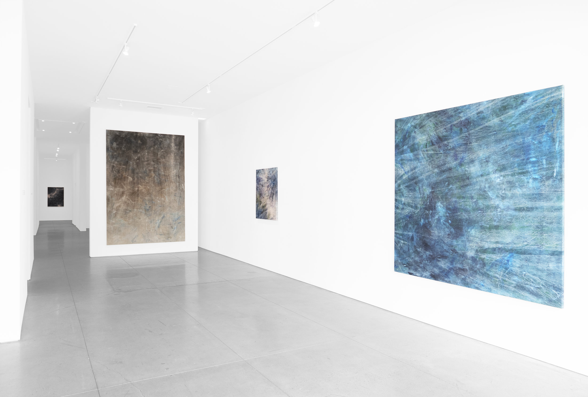 Cole Sternberg Solo Exhibition 2019_Peter Blake Gallery_Installation View_3.jpg