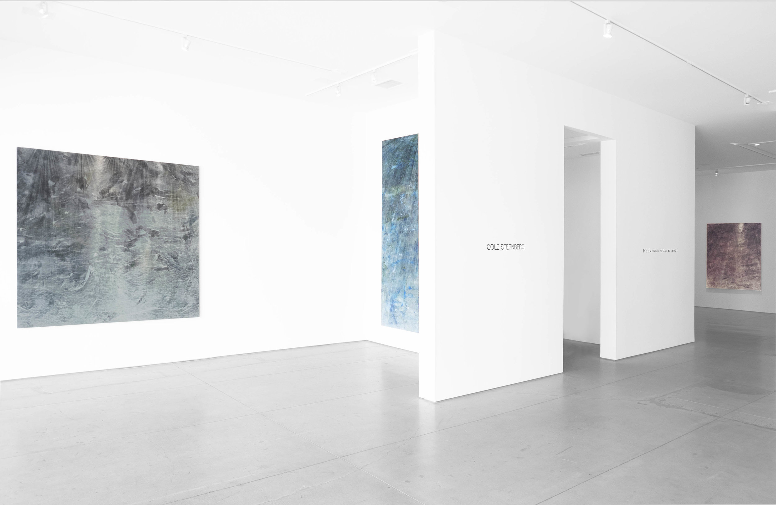 Cole Sternberg Solo Exhibition 2019_Peter Blake Gallery_Installation View_4.jpg