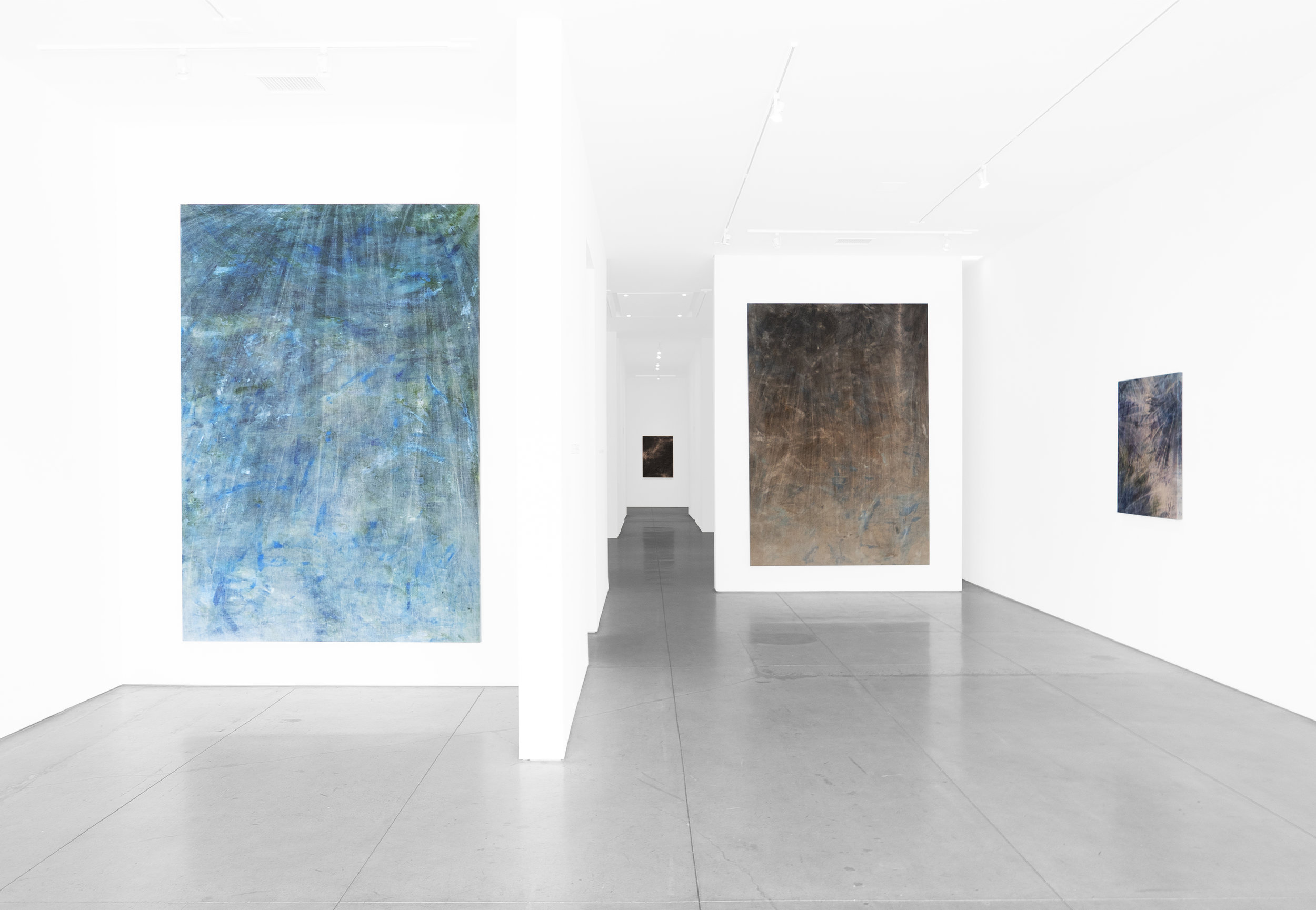Cole Sternberg Solo Exhibition 2019_Peter Blake Gallery_Installation View_6.jpg